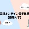 【慶熙大学】韓国語オンライン留学を受けてみた!【オススメ】
