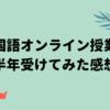 【韓国語学習】慶熙大学オンライン韓国語課程を夏休み・秋学期と連続受講した感想【週
